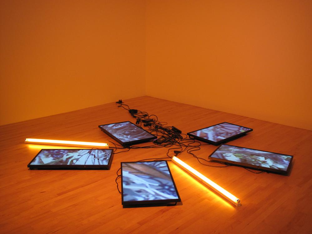 installation of five tv monitors and 2 neon orange lights laid in a circle formation on floor with cords and outlets exposed