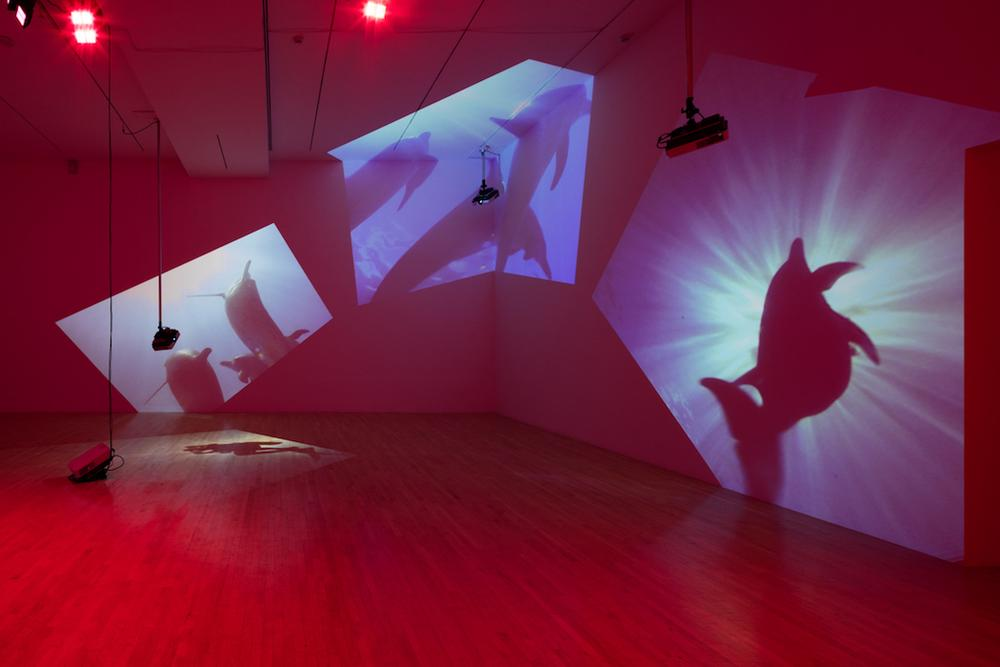 red illuminated room with four projections on the walls and floor in open space gallery
